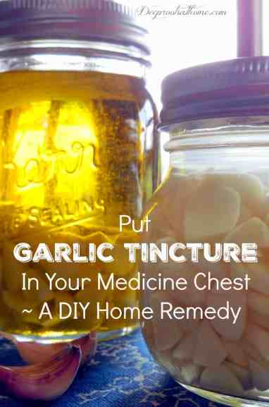 Garlic Tincture ~ DIY Home Remedy, lower blood pressure, Kerr canning jar, Ball jar, Contraindications, Cautions, and Side Effects of Garlic, healthy living, natural remedies, herbal remedy, DIY, make your own, homemade, homemaking, medicine chest, botulism in garlic-infused olive oil, softneck, garlic-infused oil, DIY, home remedy, hardneck varieties, Vinegar of the Four Thieves, antiviral, midwifery, herbal healer, lower blood triglycerides and total cholesterol, Allium sativum, allicin, bird flu, antibiotic, antifungal, anti-inflammatory, anticancer, garlic tincture, cooking oil, infusion, garlic breath, make a tincture, grow your own, harvest bulbs,