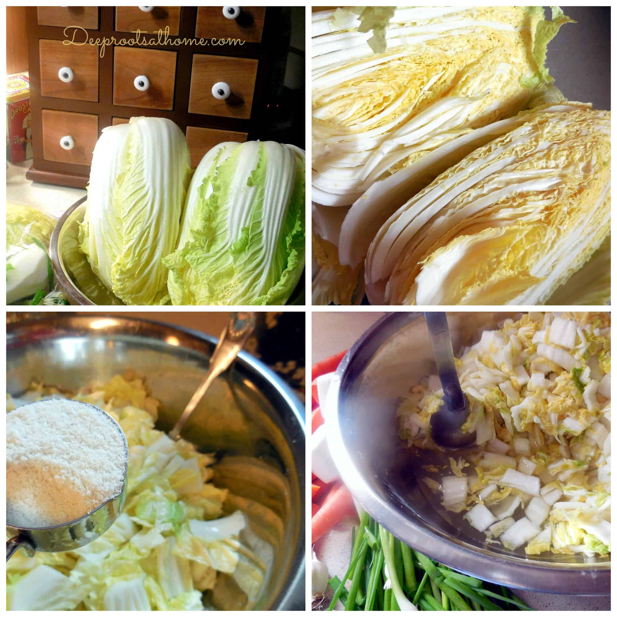 Easy Authentic Basic Fermented Kimchi, vegan, food preservation, lacto-fermentation, healthy gut, good bacteria, kimchi, healing the gut, anticancer, probiotic, Bubbies pickles, sauerkraut, brine, pickling spices, kahm yeast, slow fermentation, finger foods, old-fashioned, the way grandma used to ferment, healthy living, putting up the harvest, sea salt preservation, napa cabbage, Celtic sea salt,