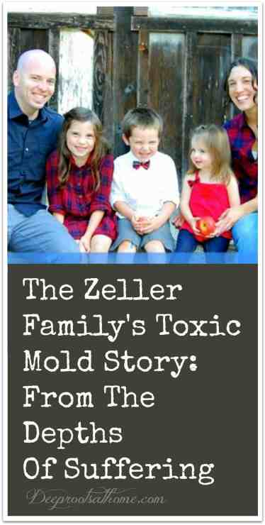 The Zeller Family's Toxic Mold Story: From The Depths Of Suffering, toxicity, triggers, mental illness, brain fog, loss of memory, headaches, mysterious illness, encouragement for women, parenting, mothering, healthy living, mold exposure, Andrea Fabre's blog MomsAware, stillbirth, losing a child, grief, grieving, mycotoxins, surviving mold, mold remediation, sickness, toxicity, stachybotris, aspergillus, glorifying God in suffering, trials and pain, fibromyalgia,