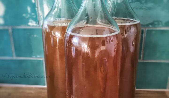 A Complete Beginner's Guide To Brewing Your Own Kombucha, DIY, keeper of the home, healing remedies, health benefits, natural medicine chest, the old ways, scoby, symbiotic colony of bacteria and yeast, white sugar, tea bags, fermentation, fermenting, raw, probiotic,restoring the gut, black tea, brewing kombucha, organic sugar,
