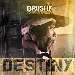 brushy-destiny