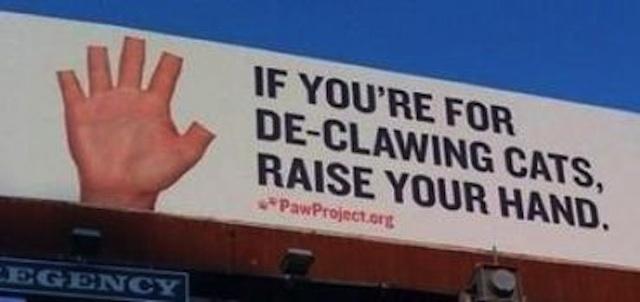 paw-project-billboard