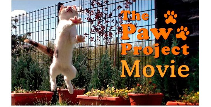 paw-project-movie