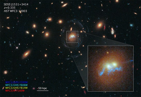 "This is a Hubble Space Telescope photograph of a never-before-seen string of pearls twisted into a corkscrew shape that winds around the cores of two colliding galaxies. The 'pearls' are superclusters of blazing, blue-white, newly born stars. The whole assembly must result from the gravitational tidal forces present in the galaxy collision. The serendipitous discovery was made while astronomers were studying the galaxy cluster SDSS J1531+3414. The underlying physics behind the ""beads on a string"" shape is related to describing the behavior of self-gravitating clumps of gas. It's analogous to the process where rain falls in drops rather than in continuous filaments from clouds. It's called the Jeans instability, and it can play out on distance scales of enormous orders of magnitude. (Image: NASA/ESA)"