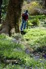 burrows farm gardens - 51