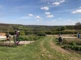 garden april 2017 - 40
