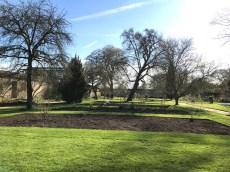 Oxford March 2017 - 105