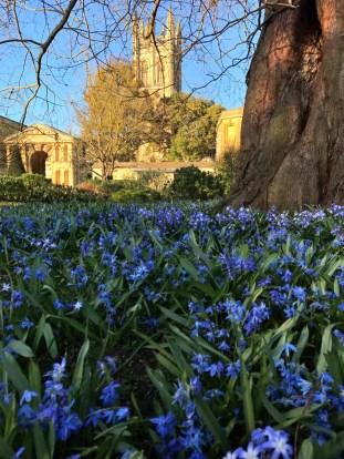 Oxford March 2017 - 145