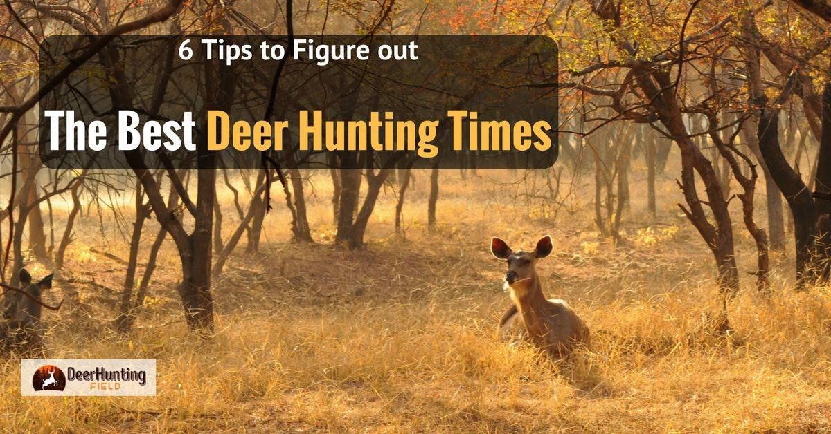 best deer hunting times
