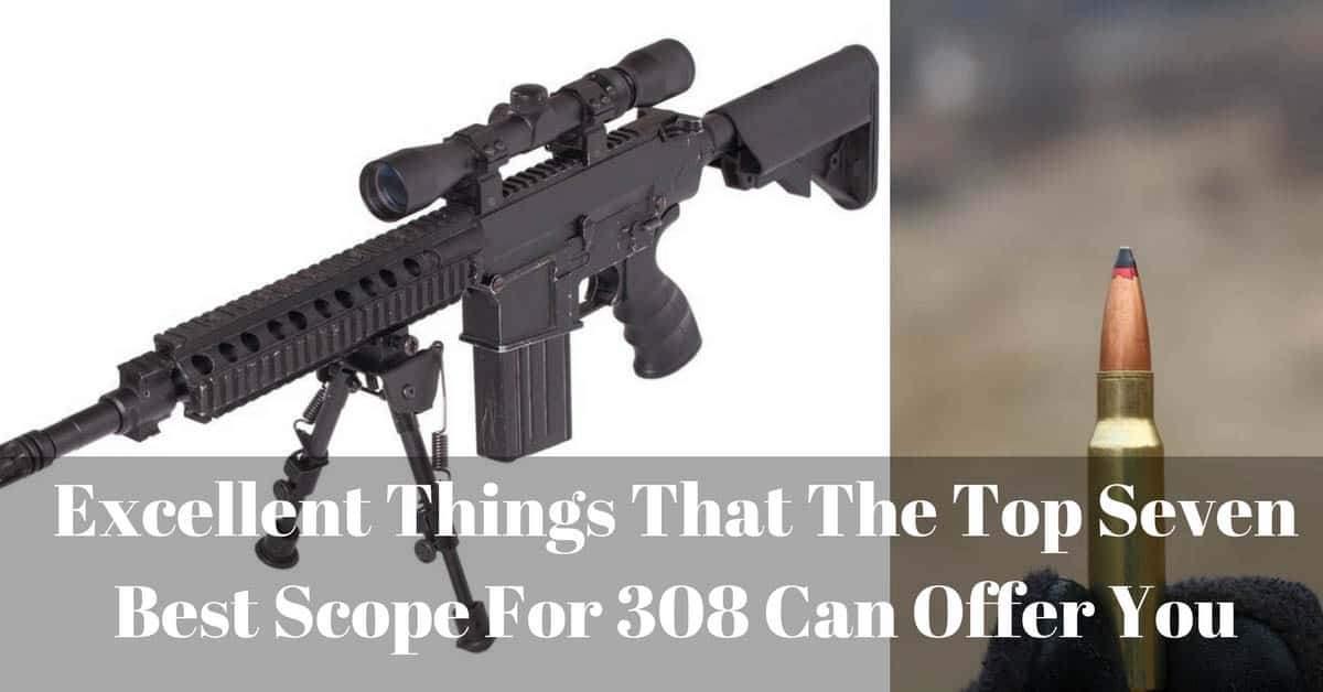 Best Scope For 308