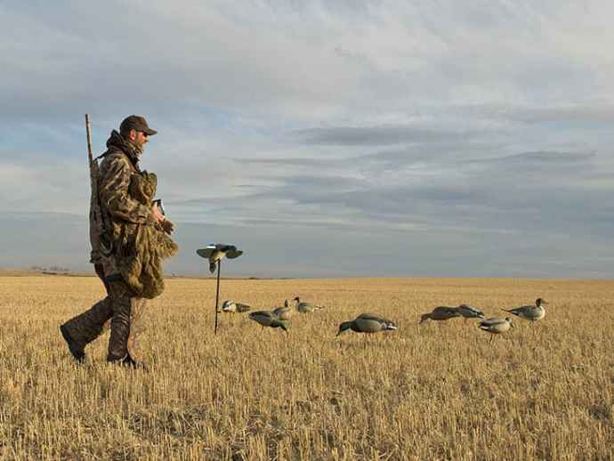 Laws-in-Waterfowl-Baiting