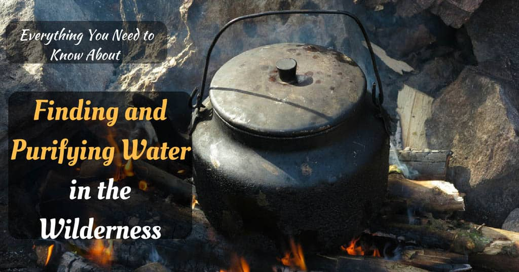 Finding and Purifying Water in the Wilderness