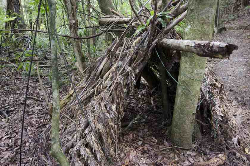 A diy survival hut in the forest.