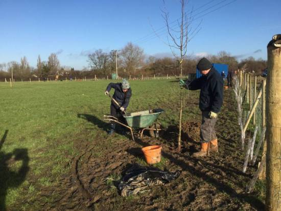 Steve & Lucy planting their own Oak, complete with name tag.