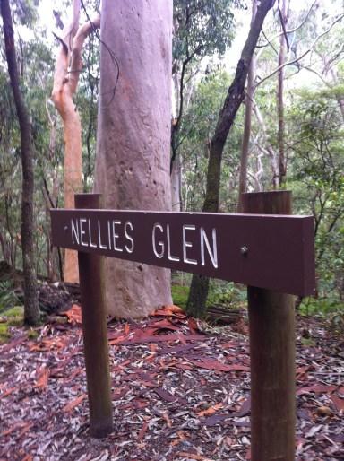 Picturesque Glen
