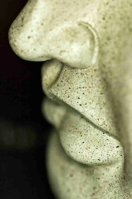 Print of the Nose and Lips of Buddha Photo