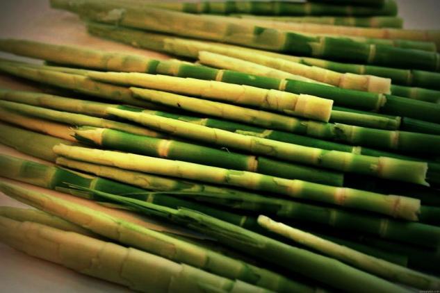 bamboo-shoots1