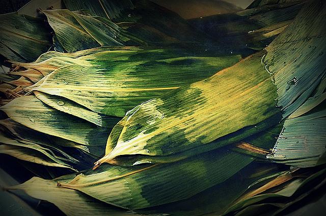bamboo_leaves_ZongZi1