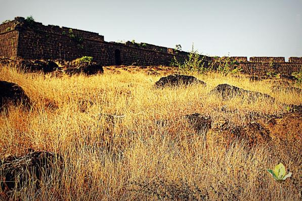 Chapora_Fort_Goa_2046