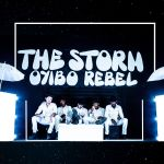 Oyibo Rebel - The  Storm