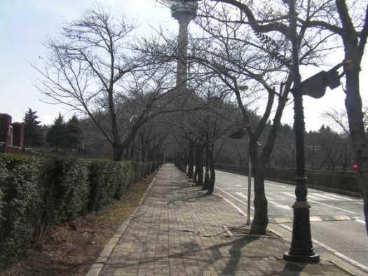 山の上に見えるタワーへ続く坂道が長くきつい