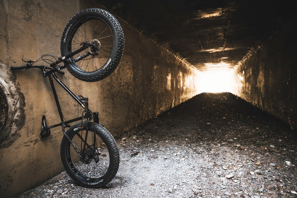 Rad Bicycle Co Fat Tire Bike