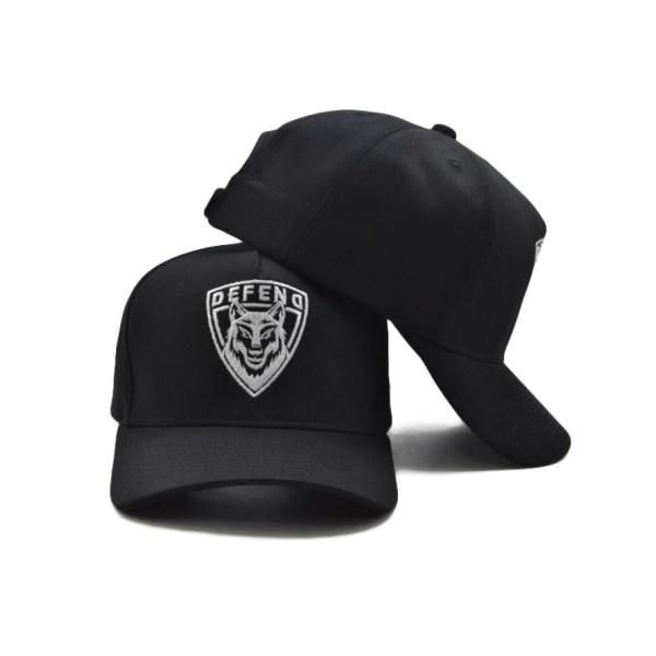 DEFEND_CAP