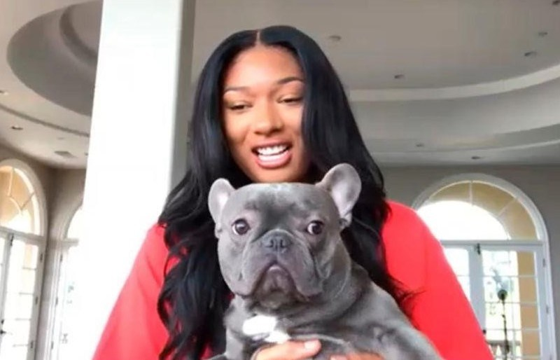 Megan Thee Stallion to host new series for pets