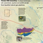 Golden Cheeked Warbler At Risk From Liquefied Natural Gas Pipelines In Texas Hill Country Center For Conservation Innovation