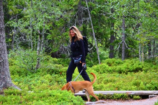 Hiking in Fulufjället National Park (2)