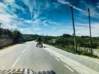 Roadside impressions