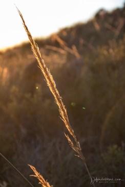 Sundown in El Pilar
