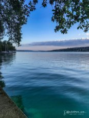Morning swim in lake Zurich