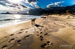Beach_23_Dec-7