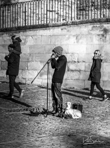 Street Musician in Avignon