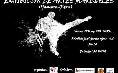 Exhibición de Yawara-Jitsu en Mula (Murcia)