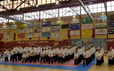 Crónica XIV Campeonato de España de Yawara-Jitsu