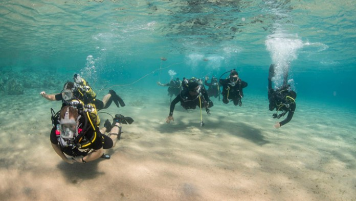 Clearance divers from Fleet Diving Unit 3, assigned to Task Group 523.3, and divers from the Royal Naval Force of Jordan, conduct a search dive while participating in International Mine Countermeasures Exercise (IMCMEX). IMCMEX includes navies from 44 countries whose focus is to promote regional security through mine countermeasure operations in the U.S. 5th Fleet area of responsibility. (U.S. Navy photo by Daniel Rolston)