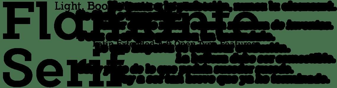 Flamante Serif - 8 font styles