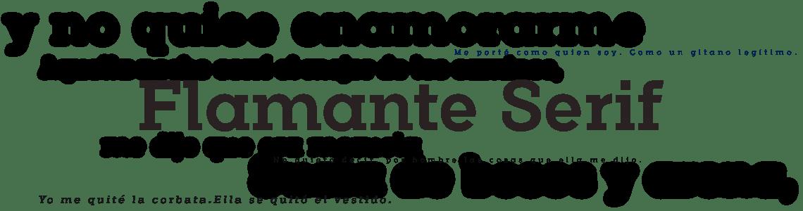 Flamante Serif - Editorial fonts
