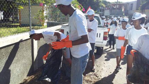 Volunteer Mauritius