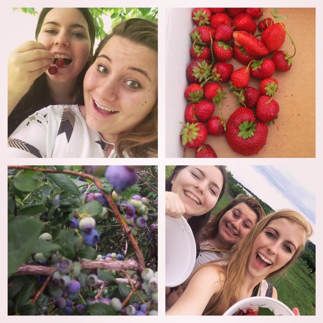 Berry Picking!