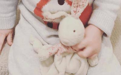Mummy Rabbit
