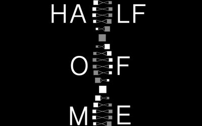 Guest Blog – Ally from HalfOfMe Podcast