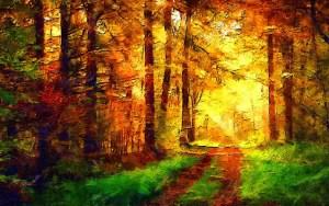 Paysage d'une foret en automne