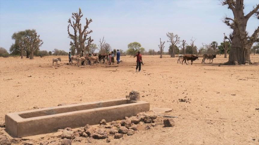 Mali, Afghanistan, déplacés climatiques, le temps presse.