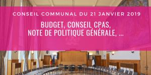 Conseil communal du 21/01/2019