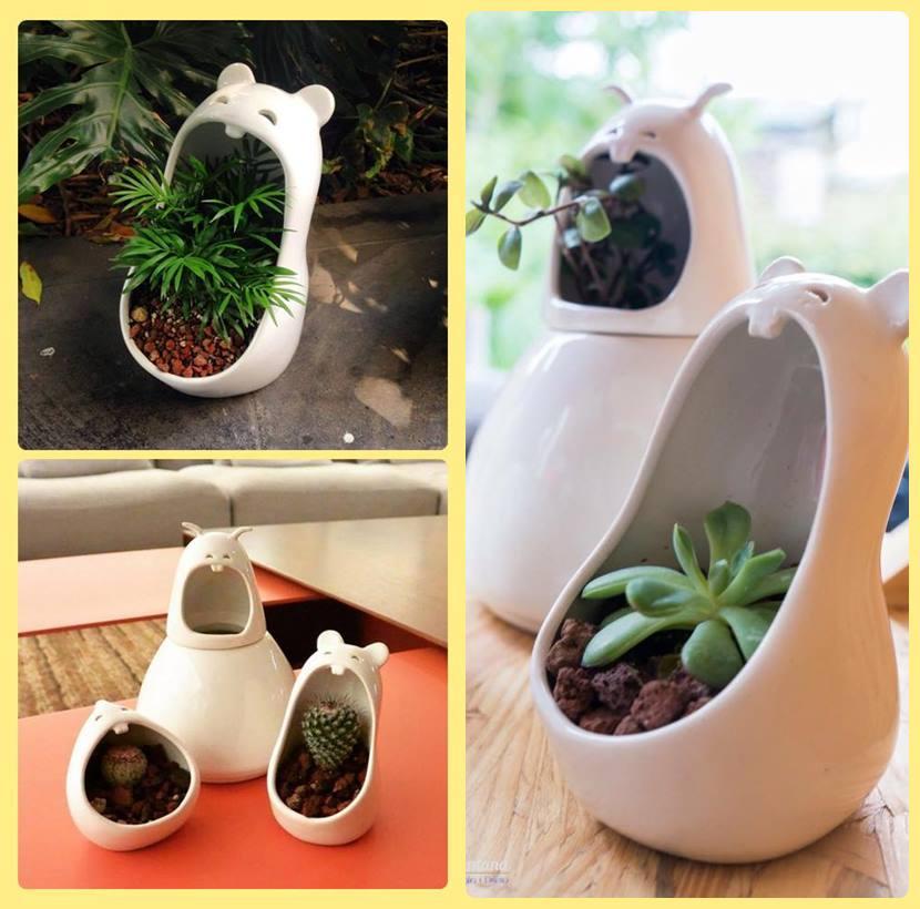 Ideias para decorar com vasos de cerâmica divertidos