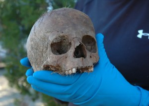 Here's the child's intact skull immediately after it was removed from her grave. Pettem photo
