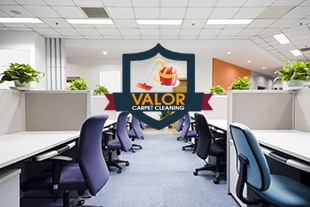 Valor Carpet Cleaning